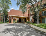 1188 Royal Glen Drive Unit 323, Glen Ellyn image