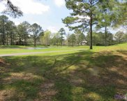 13996 Clubhouse Way Dr, St Francisville image