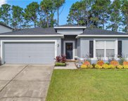 9549 Water Orchid Avenue, Clermont image
