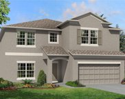 11418 Acacia Grove Lane, Riverview image