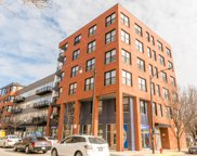 1621 South Halsted Street Unit 309, Chicago image