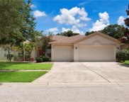 7308 Carrington Oaks Lane, Apollo Beach image