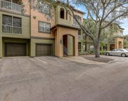 13215 Sanctuary Cove Drive Unit 204, Temple Terrace image