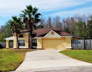 424 Sea Willow, Kissimmee image