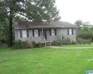 335 Mobile Ave, Trussville image