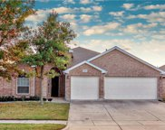 2908 Spotted Owl, Fort Worth image