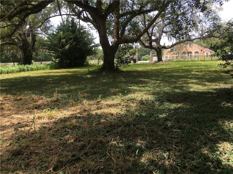 zellwood singles Find your dream single family homes for sale in zellwood, fl at realtorcom® we found 2 active listings for single family homes see photos and more.