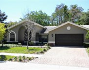 1011 Lake Ridge Drive, Safety Harbor image