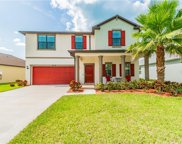 21503 Billowy Jaunt Drive, Land O' Lakes image