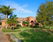 17826 Crystal Preserve Drive, Lutz image