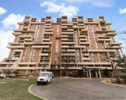 465 West Dominion Drive Unit 1508, Wood Dale image