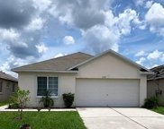 11752 Lynmoor Drive, Riverview image