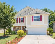 15419  Lakepoint Forest Drive, Charlotte image