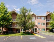 11545 Settlers Pond Way Unit 1B, Orland Park image