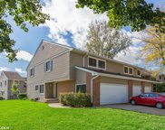 171 West Fabish Drive, Buffalo Grove image