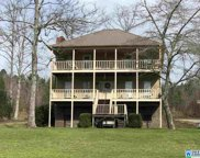 1695 Cook Springs Rd, Pell City image