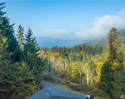 640 Chuckanut Heights Rd, Bellingham image