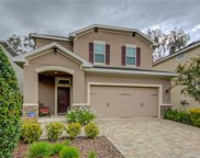 16310 Bayberry View Drive, Lithia image