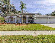 1003 Kings Way Lane, Tarpon Springs image