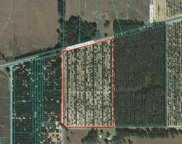 00000 Se 156th Place Road, Weirsdale image
