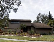 13704 Wilkes Drive, Tampa image