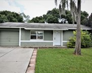 115 Apple Blossom Court, Orlando image