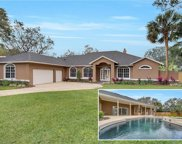 1614 Imperial Palm Drive, Apopka image