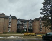 340 Claymoor Street Unit 1A, Hinsdale image
