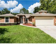 851 Lake Jackson Circle, Apopka image