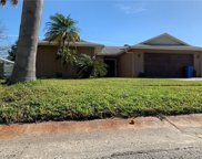 7203 Battenwood Court, Tampa image