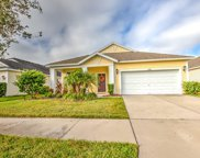 11566 Balintore Drive, Riverview image