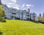 3001 Terravista Place Unit 101, Port Moody image