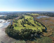 Oak Point Preserve Lot 13, Clermont image
