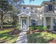 15926 Fishhawk Creek Lane, Lithia image