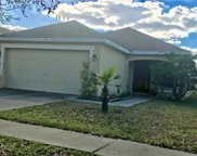 5531 Turtle Crossing Loop, Tampa image