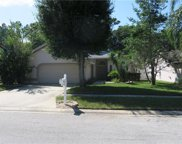 14880 Sugar Cane Way, Clearwater image