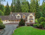 18400 228th Ave NE, Woodinville image