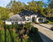 9788 Sw 195th Circle, Dunnellon image