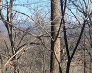 LT102 Badger Road, Blairsville image