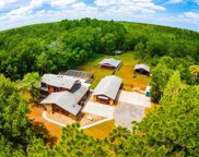 25205 Bunting Circle, Land O Lakes image