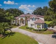 2210 Fountain Key Cir, Windermere image