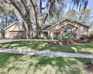 2807 Ormandy Court, Tampa image