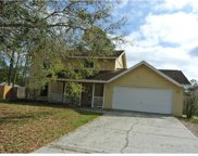 3752 Biscay Place, Land O Lakes image