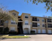 5125 Palm Springs Boulevard Unit 4302, Tampa image