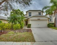 21515 Brixham Run Loop, Estero image