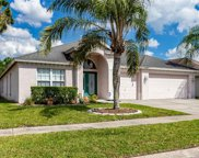 18209 Collridge Drive, Tampa image