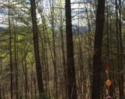 5LOTS The Mountain Sub, Blairsville image