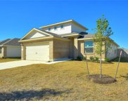 172 Red Sun Dr, Kyle image