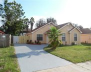596 Swallow Court, Apopka image