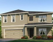 4115 Willow Branch Place, Palmetto image